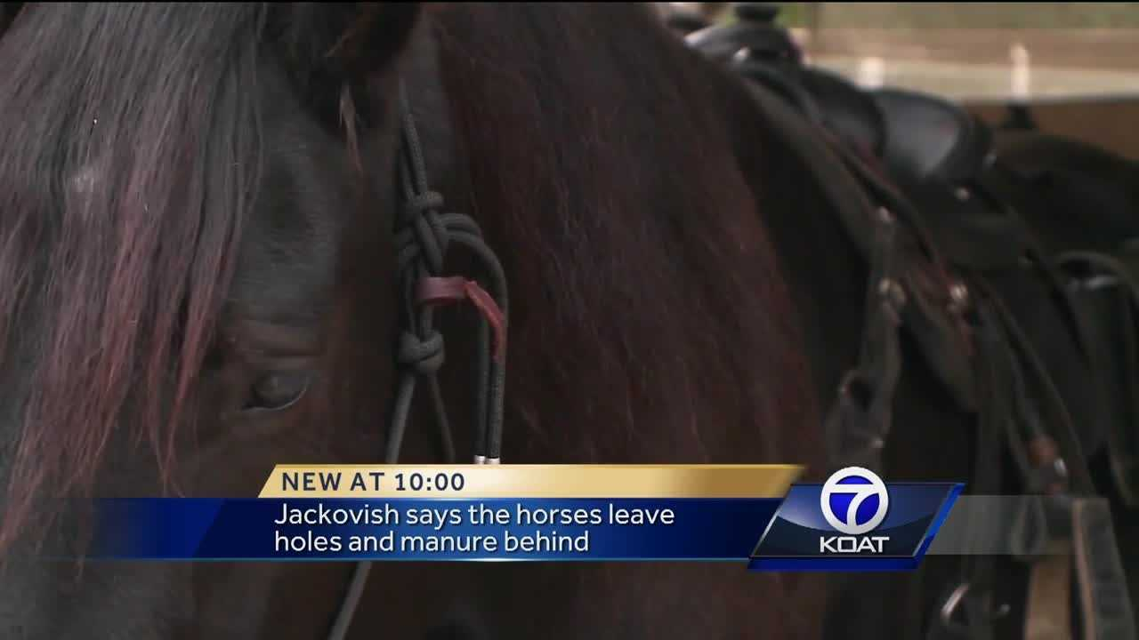 Rio Rancho debates banning horses in the Bosque