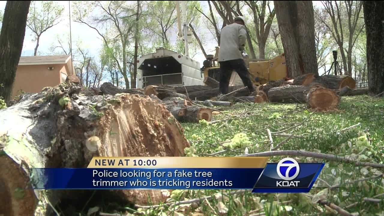 Fake tree trimmer scamming homeowners