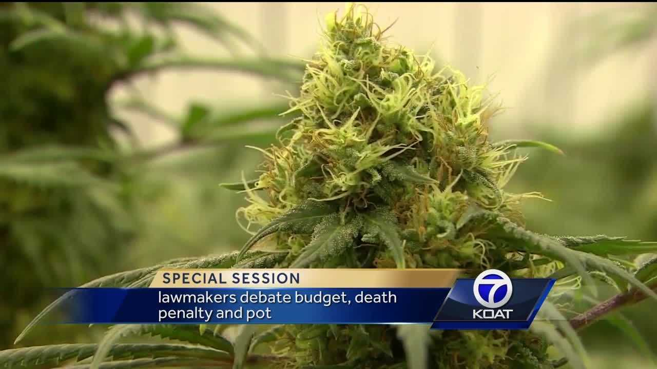 Lawmakers will debate budget, death penalty and pot in special session