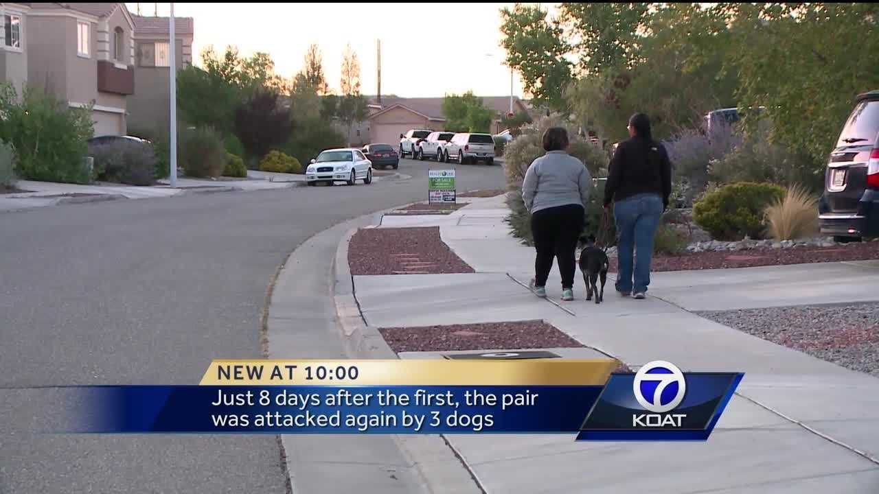 An Albuquerque woman and her dog are recovering after being attacked twice last month by stray dogs.