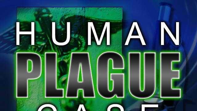 Human Plague Case - 13468653