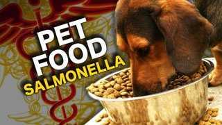 pet food salmonella generic