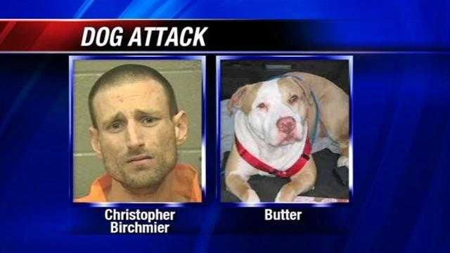 Animal welfare took dog into custody.