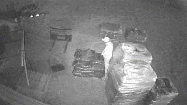 Thief caught on tape stealing from business
