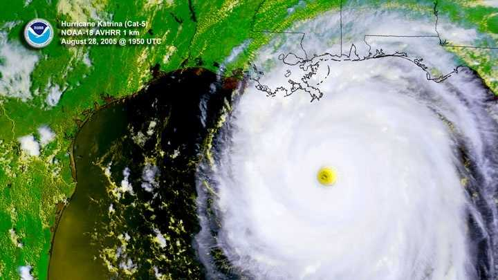 hurricane katrina political reaction Hurricane katrina is viewed as one of the most powerful and devastating hurricanes that the peoples of the united states have ever experienced.
