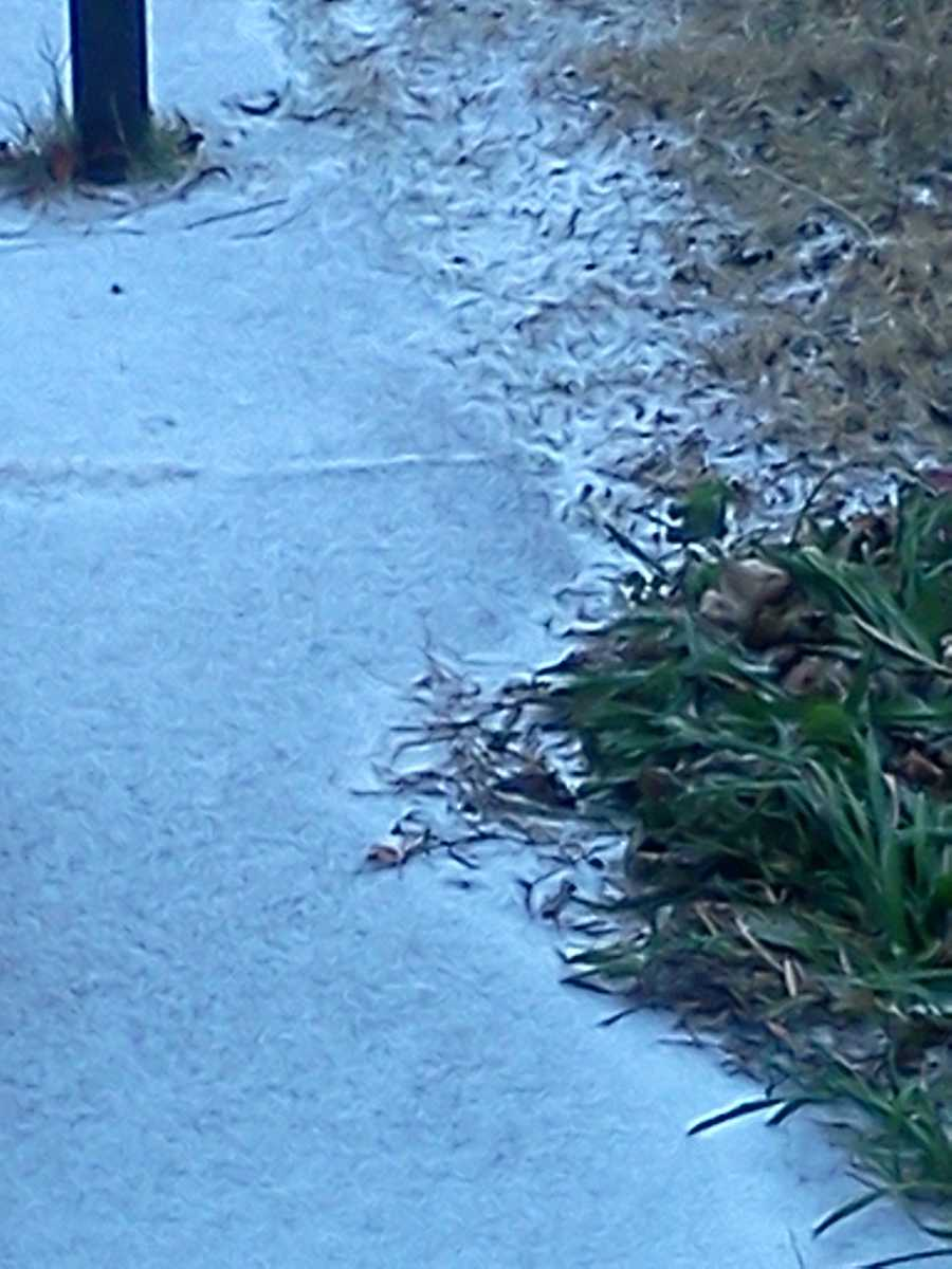 Sleeting in Moore - Photo by Jack Buzzard