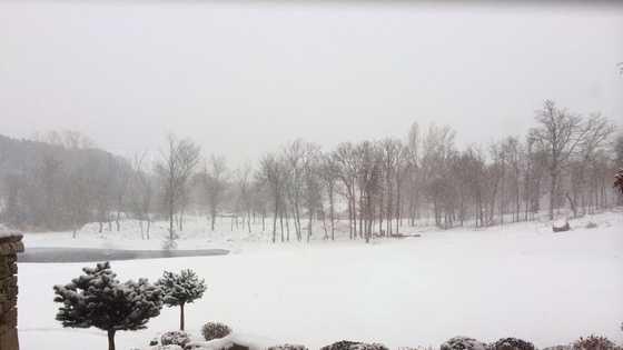 Snow OKC