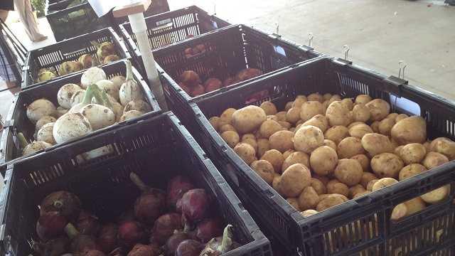 FarmersMarket3.JPG