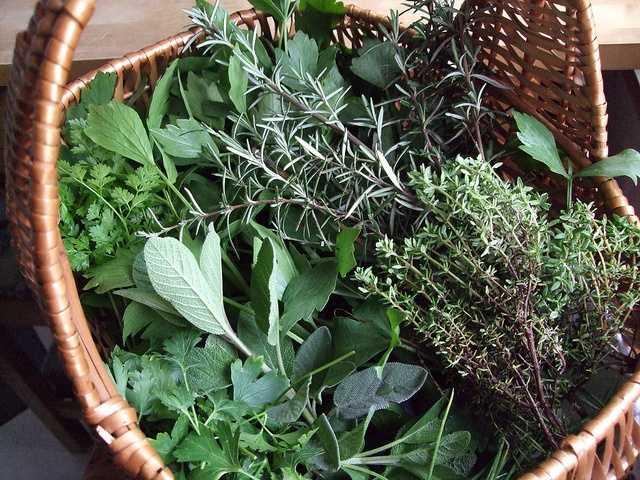 Aug. 29: More Herbs, Less Salt Day