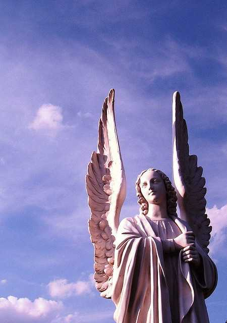 Aug. 22: Be an angel day