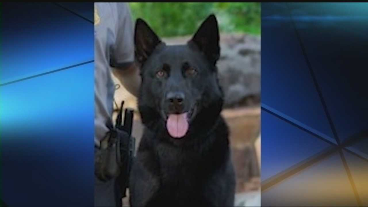 Full honors are planned for Kye, the K-9 officer killed in the line of duty after a chase with a suspect.