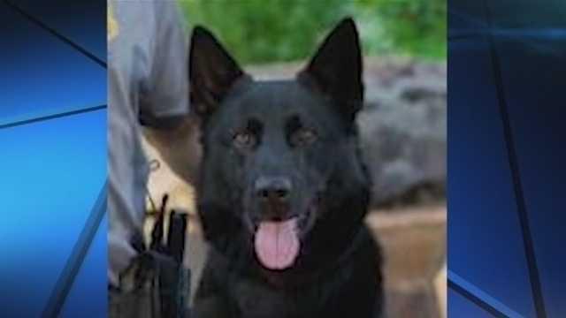 Oklahoma City police begin process of finding, training new K-9