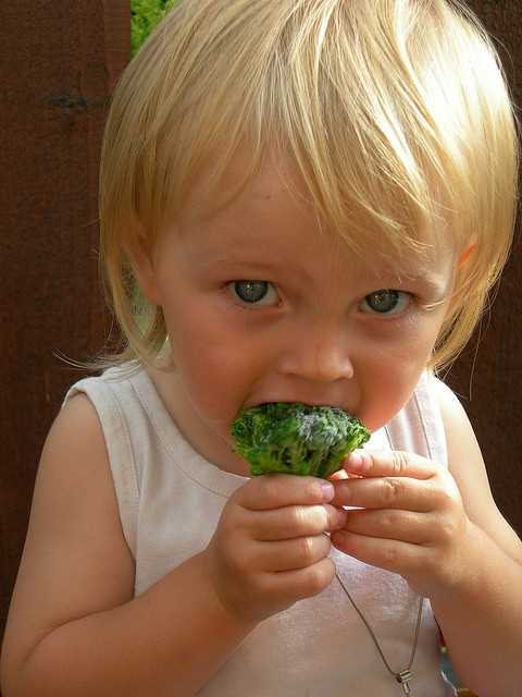 1. The website sheknows.com suggests enforcing a 'No thank you bite' rule. The rule means you can take one bite and no more if you don't like it. Encouraging kids to taste new fruits and vegetables is better than forcing them to eat an entire serving of something they hate.