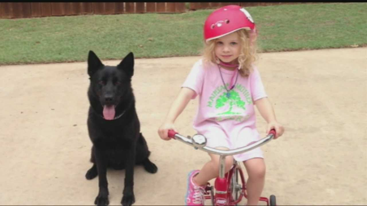 The daughter of an Oklahoma City police officer who lost his K-9 partner in the line of duty is working to make sure all Oklahoma City police K-9 partners have protective vests.