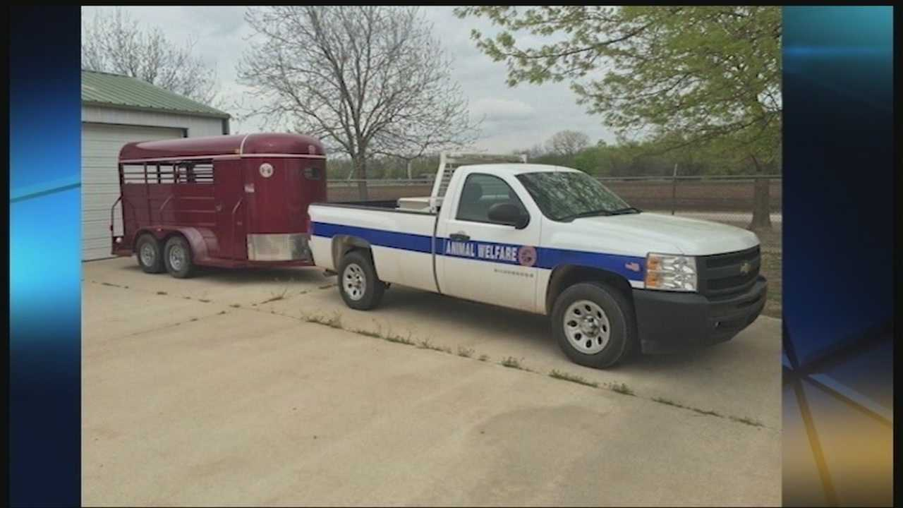 Authorities in Midwest City are looking for a horse trailer that was stolen, along with thousands of dollars of equipment from Midwest City Animal Welfare.