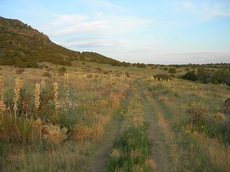 The trail to the top of Black Mesa will take you several hours, but the views from the top will reward you, as you can see not only Oklahoma valleys, but also New Mexico and Colorado. Photo from Flickr by Jimmy Emerson, DVM.