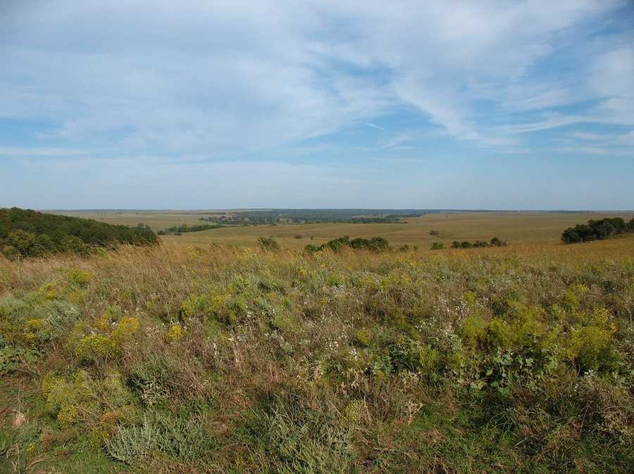 Tallgrass Prairie Preserve near Pawhuska is the largest area of protected tallgrass prairie in the world. Photo from Flickr by Marc Carlson.