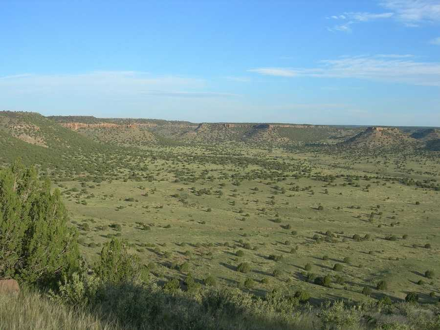 View from Oklahoma's highest point at Black Mesa State Park in the Oklahoma panhandle. Photo from Flickr by Jimmy Emerson, DVM.