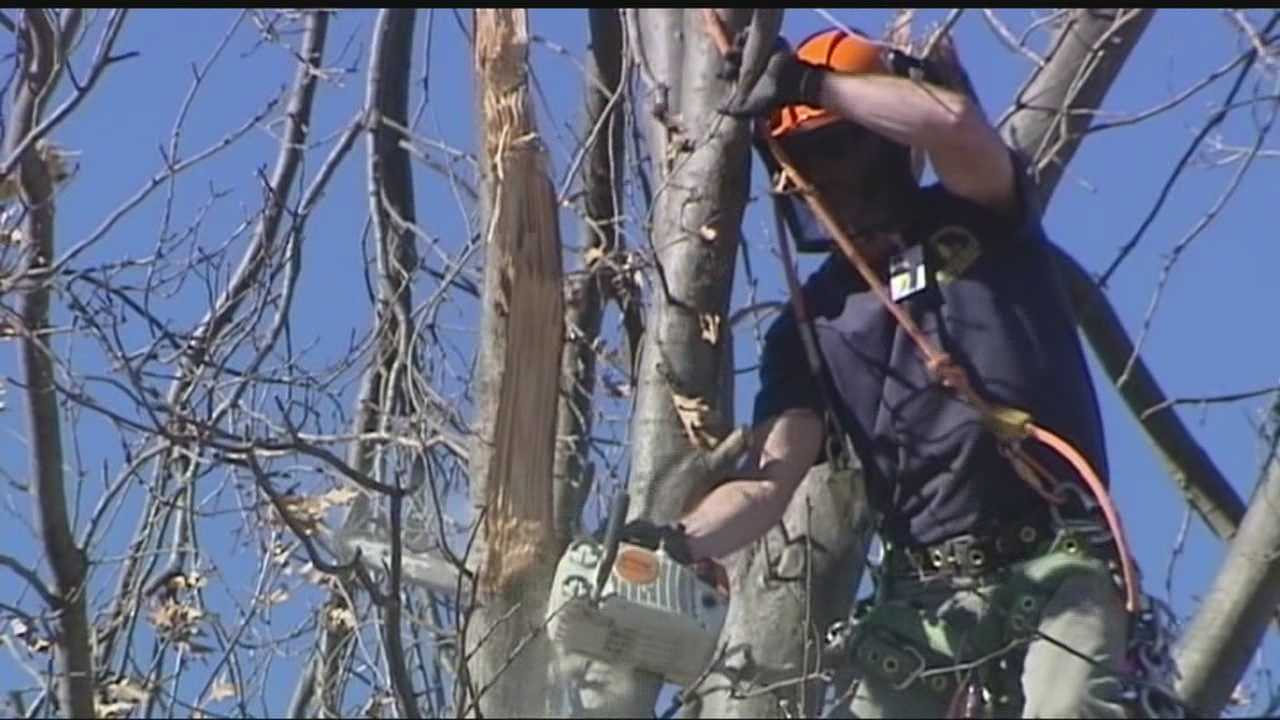 An Oklahoma City metro-area organization continues to help people who need damaged tree limbs cut down and removed from their yards.