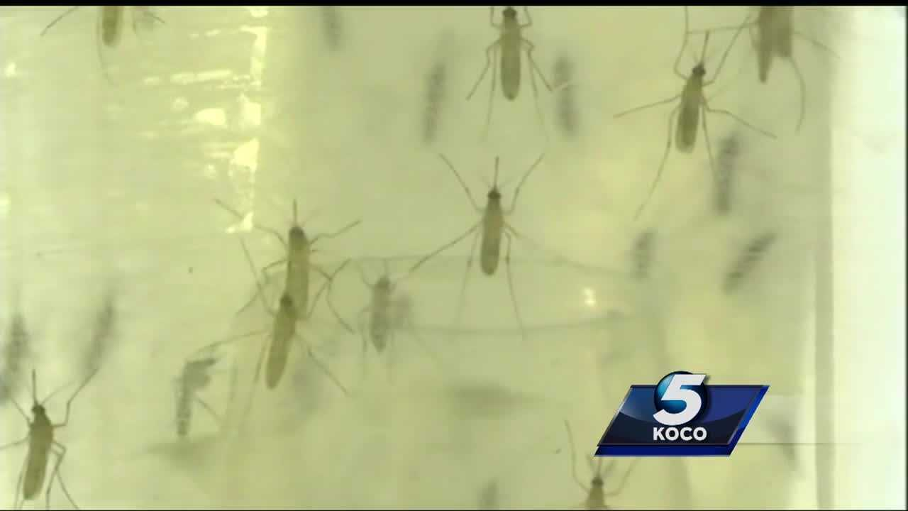 Congressman Tom Cole says money should be spent to fight the Zika virus.