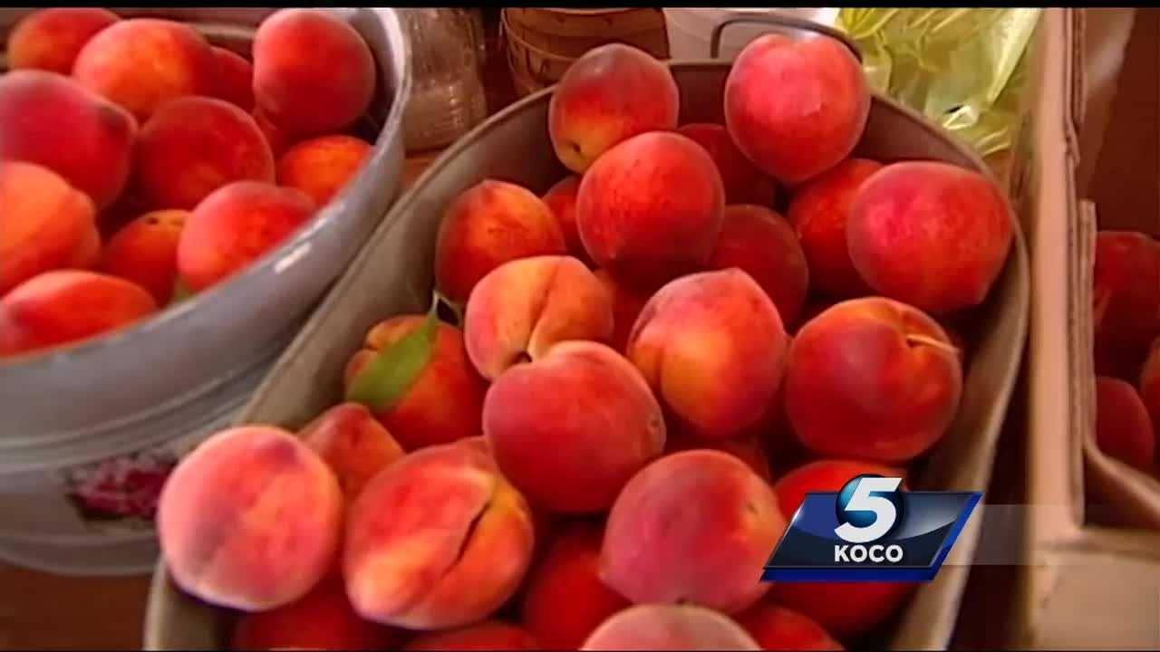 The peach harvest in Stratford came two weeks early this year, meaning the picked peaches may not be ripe during the Stratford Peach Festival.