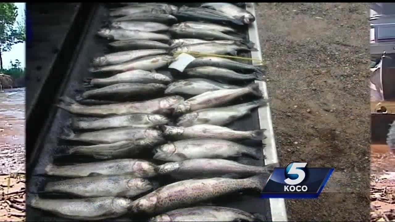 Some Oklahoma anglers have been fined after they were found catching more fish than they are legally allowed to in a day.