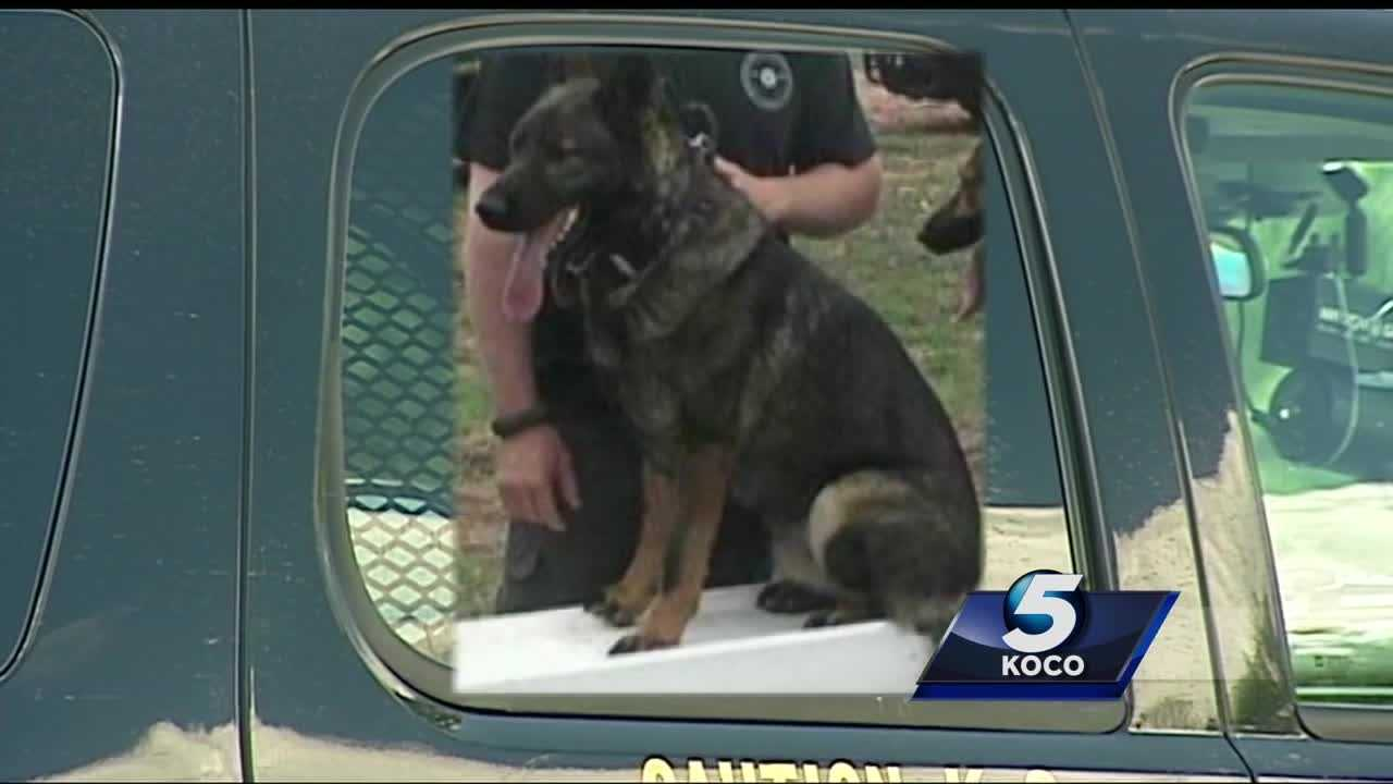 A former Stephens County deputy has been charged with animal cruelty after his K-9 unit partner died. Investigators say the deputy left the K-9 officer in a hot car for more than 30 hours without food or water.