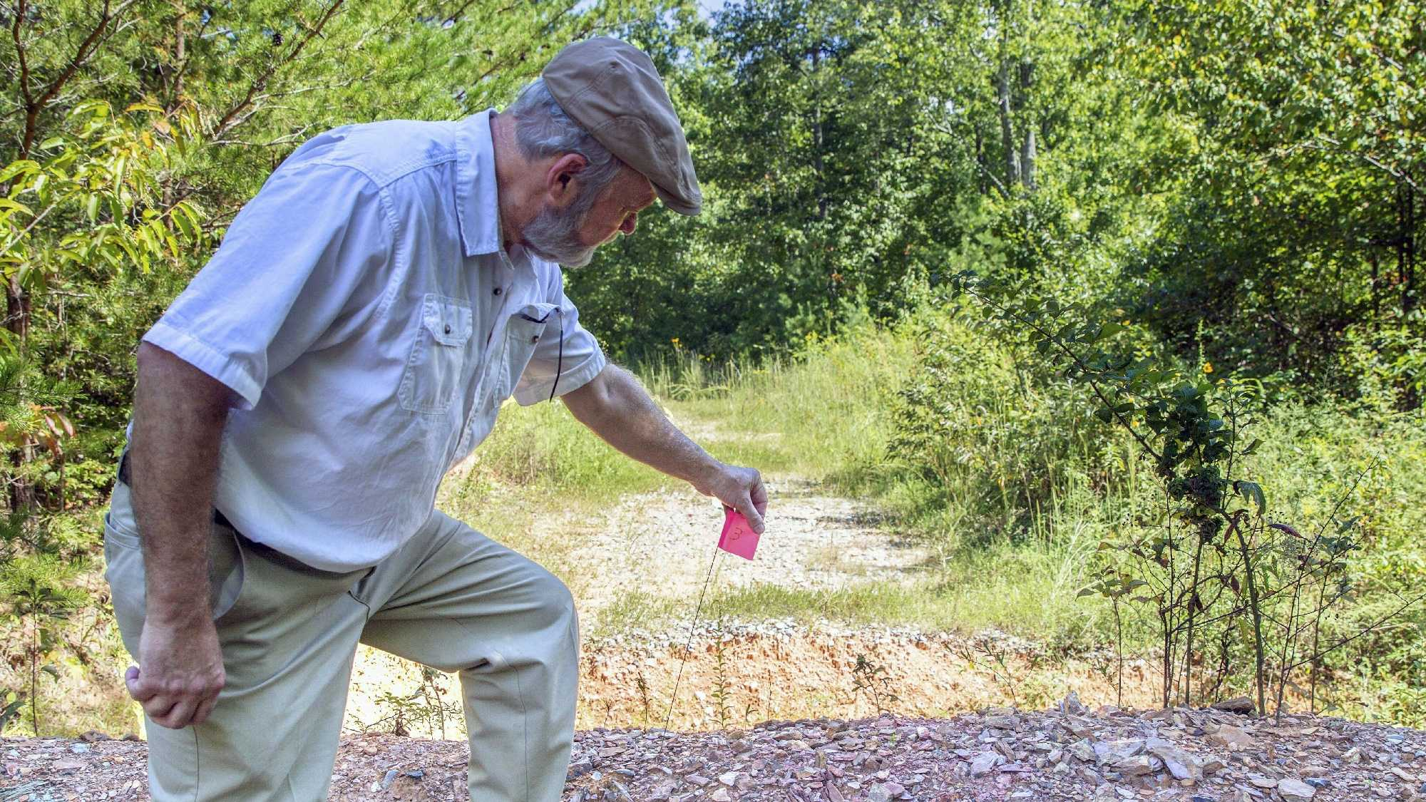In this Thursday, Sept. 15, 2016, photo, Coker Creek, Tenn., resident and historical preservationist Marvin Harper observes damage to a section of the Trail of Tears in the Appalachian Mountains. The flag indicates a spot where the U.S. Forest Service used heavy equipment to make trenches and berms in what agency officials now say was in violation of federal laws, The U.S. Forest Service is apologizing after it ripped up a portion of the Trail of Tears in the Appalachian Mountains. The damage has reopened wounds for Native Americans who consider the land sacred. (AP Photo/Erik Schelzig)