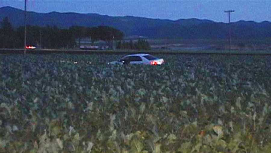 With the driver dead behind the wheel, the car careened off the highway, burst through a fence, and skid into a lettuce field. The homicide victim's passenger was also hit by bullets, and was airlifted in a helicopter to a Bay Area trauma center.