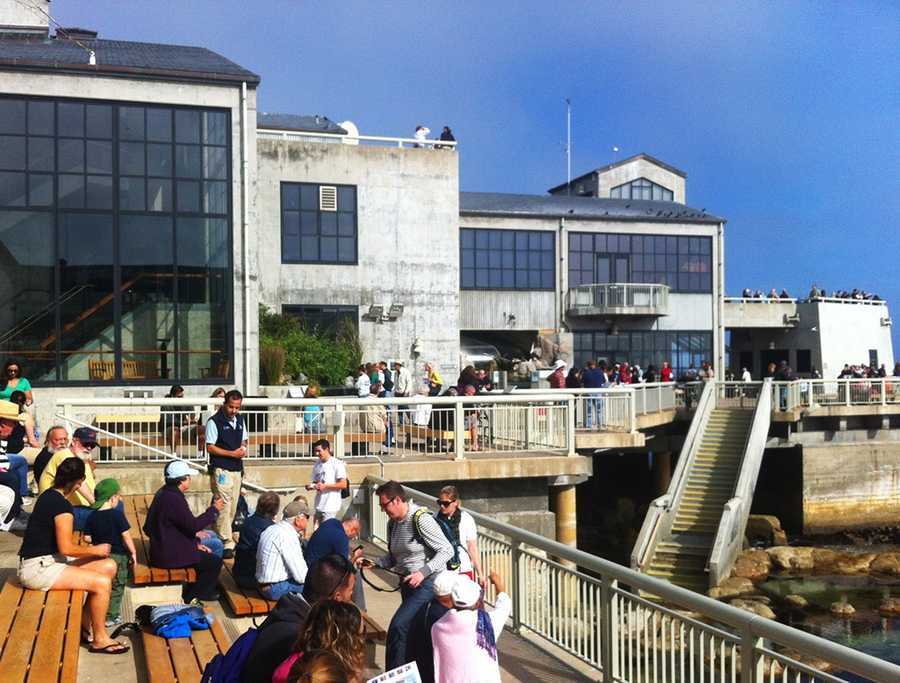 People at the Monterey Bay Aquarium caught a great view of the shuttle flying above at 10:52 a.m. Friday.