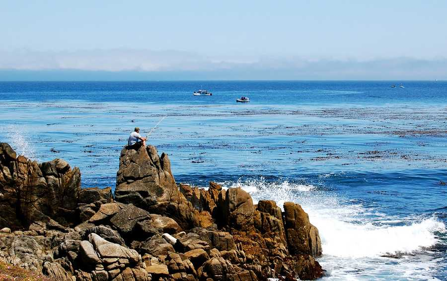 #15: Rock fishing in Pacific GroveMoondance shot this photo in June of a man fishing near Asilomar Beach in Pacific Grove.Upload your photos on ulocal