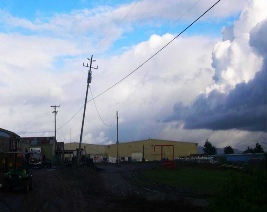 The worst damage caused by the tornado happened to several commercial greenhouses on a farm located a quarter mile inland from the ocean, weather officials said. Several trees and power poles were also ripped to the ground along San Andreas Road.