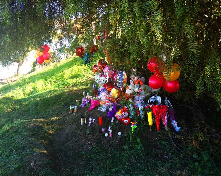 On Friday, the memorial on Highway 183 under the Davis Road overpass had grown with more balloons, candles and teddy bears. (Feb. 21, 2013)