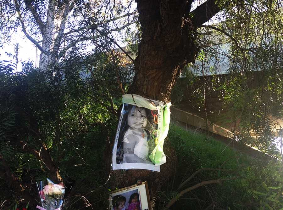Angelle was found dead along Highway 183/Market Street under the Davis Road overpass on Feb. 19. Her body was found at the base of this tree.