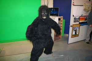 The Monterey County Weekly Gorilla stopped by our studios to give us the award for Best Anchor and Best TV News.  Then, the gorilla decided to make himself at home.  Congratulations to Dan Green and Action News 8.