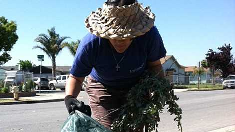 Salinas celebrates Earth Day on Saturday.