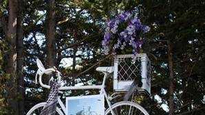 Friends and family marke 1 year since cyclist killed in Santa Cruz