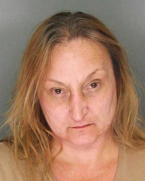 Susan Husted, 49, of Santa Cruz, was arrested for elder abuse and maintaining a drug house.