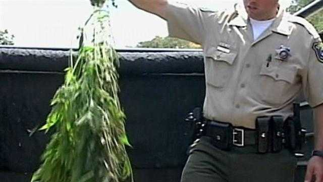 A helicopter helped hauled away more than 400 pounds of pot in Henry Coe State Park.