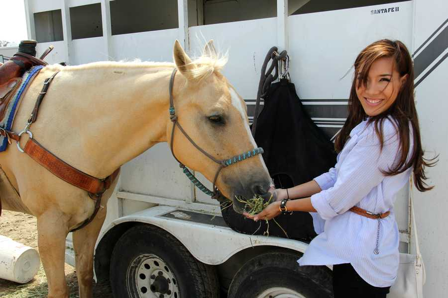 KSBW Sports Reporter Jessica Vo feeds a horse at the rodeo. (July 21, 2013)