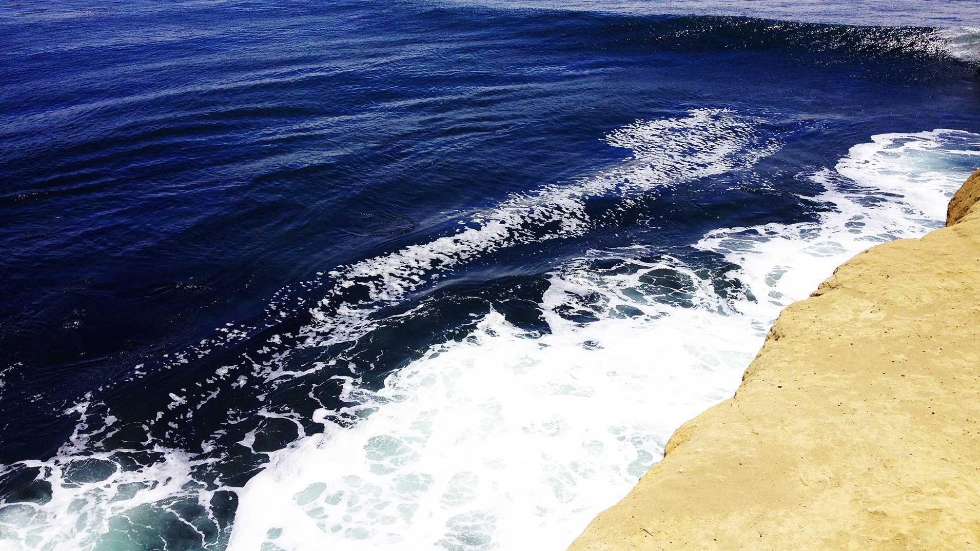 ocean pacific.JPG