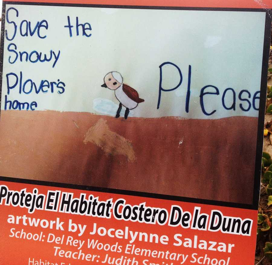 Artist Jocelynne Salazar is a student at Del Rey Woods Elementary School.