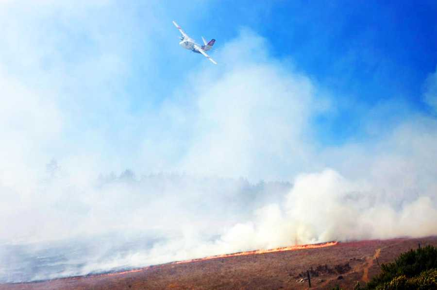Flames ignited just after 2:10 p.m. and singed 5-10 acres of wildland along Empire Grade Road near Heller Drive at UCSC's west entrance.(Aug. 26, 2013)