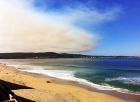 BJ Rickard took this photo in Monterey.