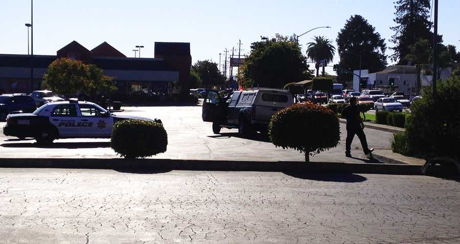 A wild chase raced through Watsonville on major streets including Green Valley Road, Holohan Road, and Freedom Boulevard Wednesday morning, and left behind a path of destruction.