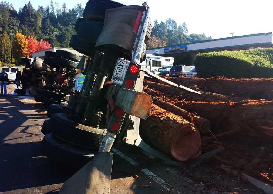 Huge redwood tree trunks spilled onto the roadway.