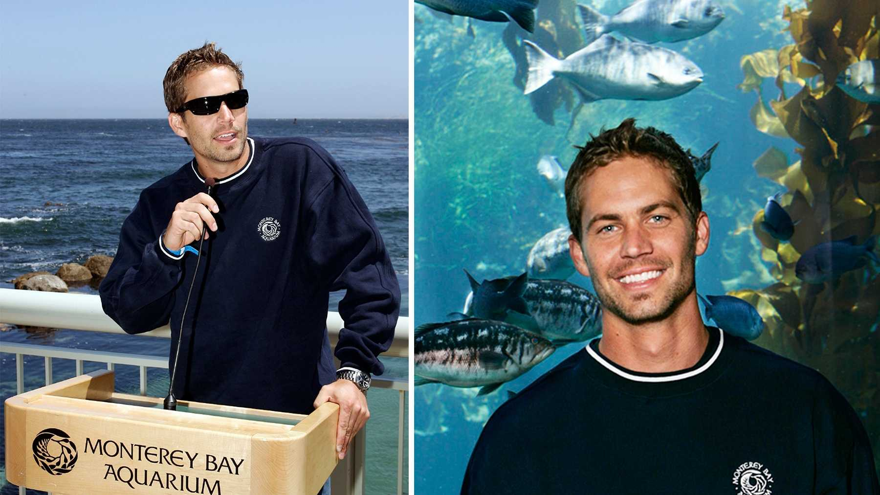 Paul Walker is seen speaking at the Monterey Bay Aquarium.