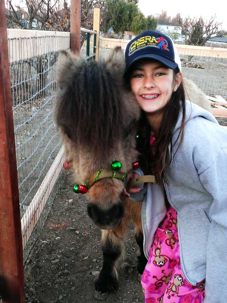 An abandoned pony got a new home after Santa Claus delivered him to Hollister Police Chief David Westrick's family on Christmas.