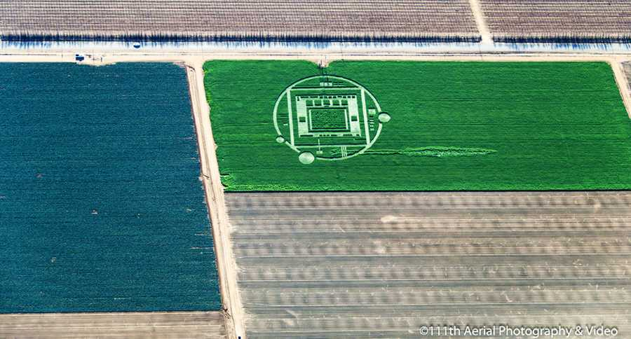 Mysterious, giant crop circles have appeared on a Chualar farm and startled observers into wondering if aliens landed in the Salinas Valley.