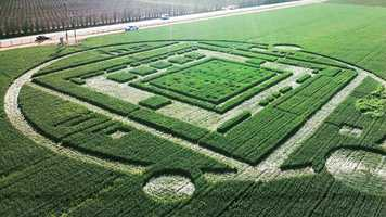 "While flying in the helicopter, Belanger said her first immediate thought was, ""What is it?""""It was beautiful. Quite beautiful,"" Belanger said. ""I believe it's possible that aliens exist, but I don't know if they would bother making a crop circle to give us a message."""
